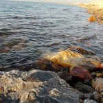 Jordan: float on the Dead Sea 1