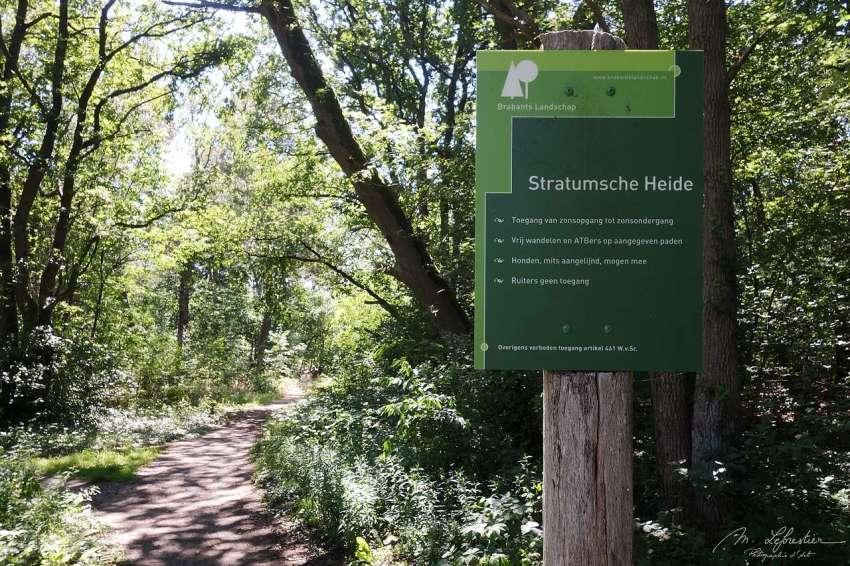 stratumse_heide_01