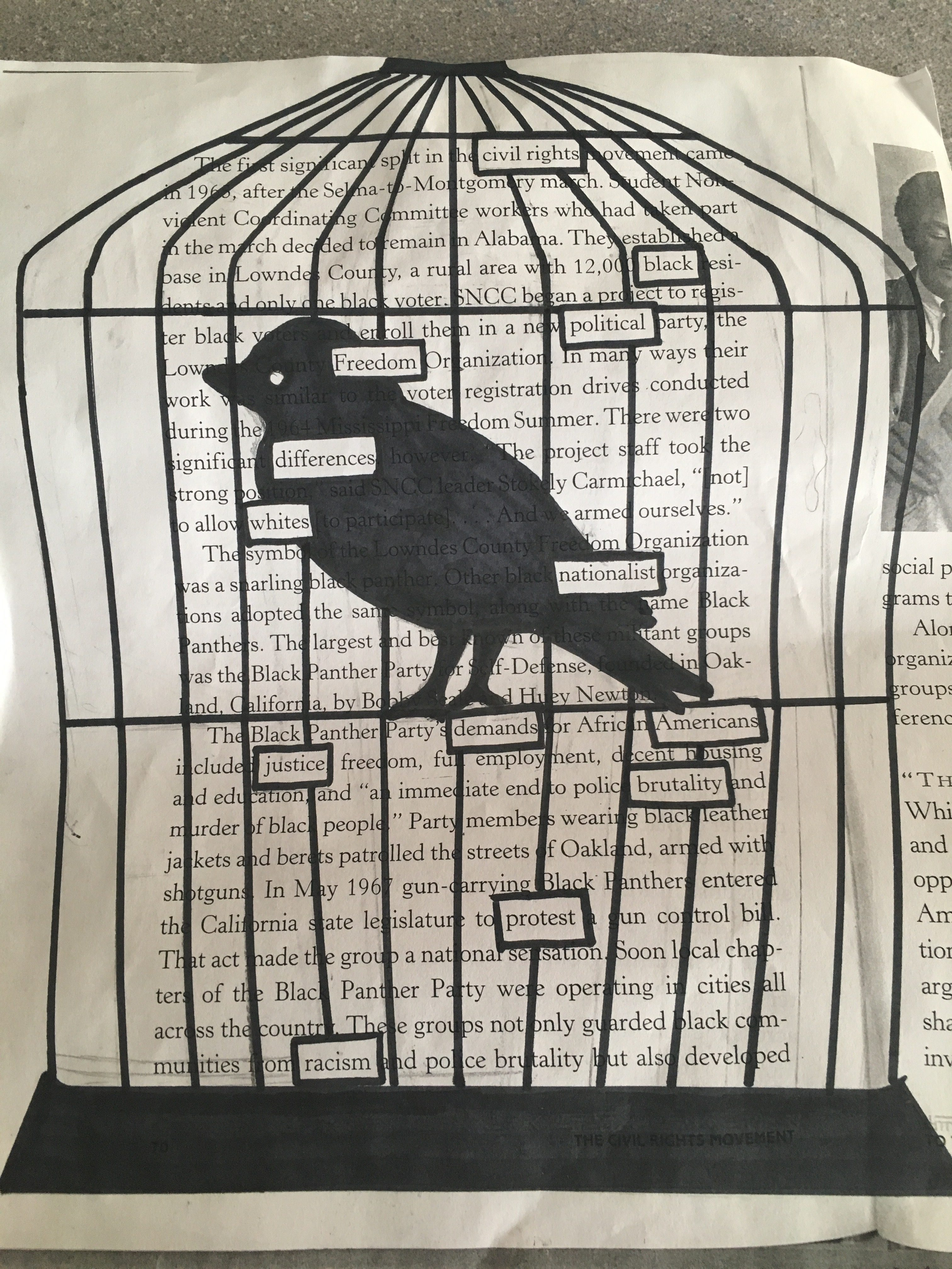 I Know Why The Cage Bird Sings Poemysis Of I Know