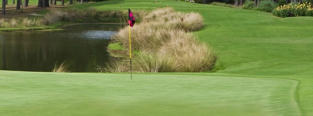 Golf Burning Ridge Myrtle Beach Save