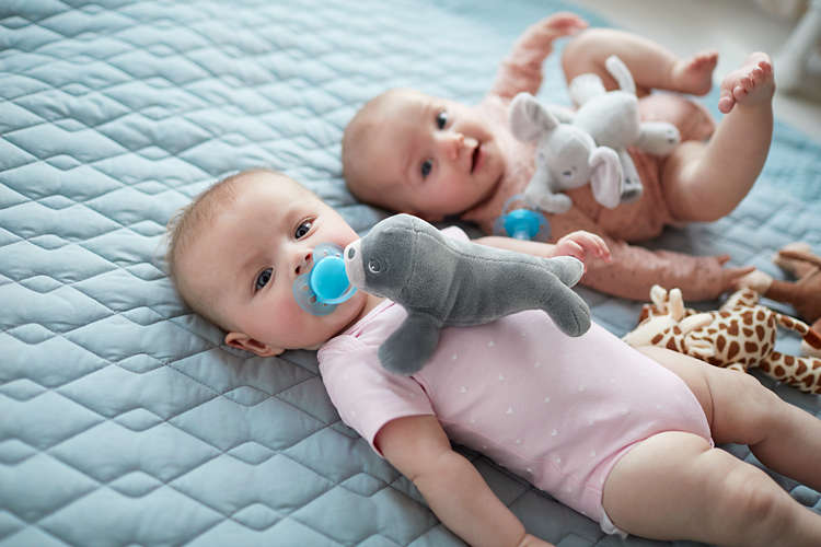 chupete philips avent peluches