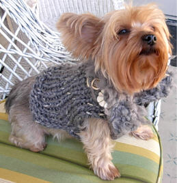 Knitting Leftovers = 'Furrrocious' Dog Sweaters Four Ways (4/6)