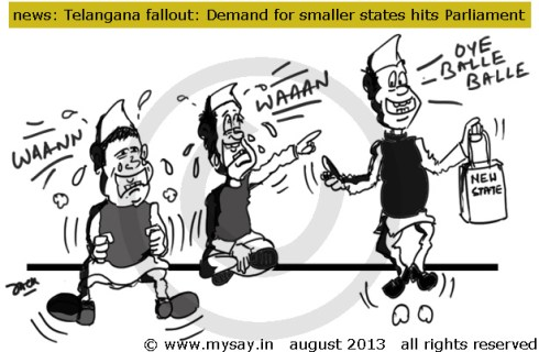 telangana cartoon,demand for smaller states increase,political cartoon,mysay.in,bodoland demand,gorkhaland demand,