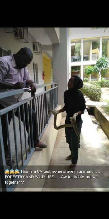 Student Holding Python In University Of Maiduguri For Her CA Test