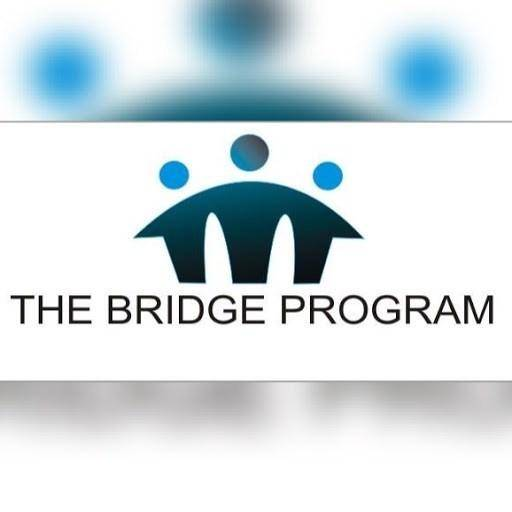 Study In Nigeria: The Bridge Program for Bright Nigerian Students 2019