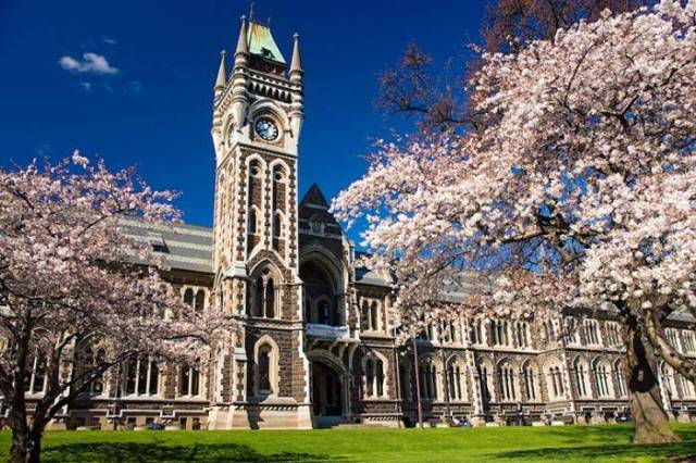 2020 Callis Trust Performance Funding At University of Otago - New Zealand