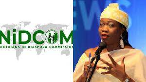 Nigerian Students are Now Beggars in the UK - NIDCOM Chairman
