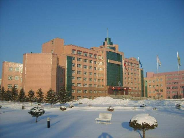2019 Heilongjiang Provincial Government Scholarships Program At Jiamusi University - China
