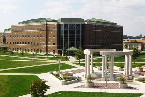 2020 International Student Merit Award At University of Illinois Springfield - USA