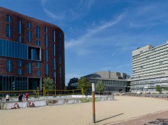International Masters Fellowship At Vrije Universiteit , Netherland