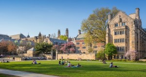 2017 Harambe Entrepreneur Alliance Fully-funded MBA Scholarships At Yale University, USA