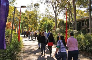 Faculty of Science High Achievers Scholarships At University Of Newcastle - Australia