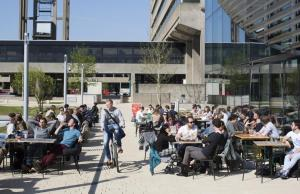 RSM Diversity Scholarships At Erasmus University Rotterdam, Netherlands