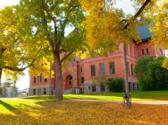 International Scholarships At Montana State University - USA