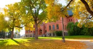 International Scholarships At Montana State University - USA