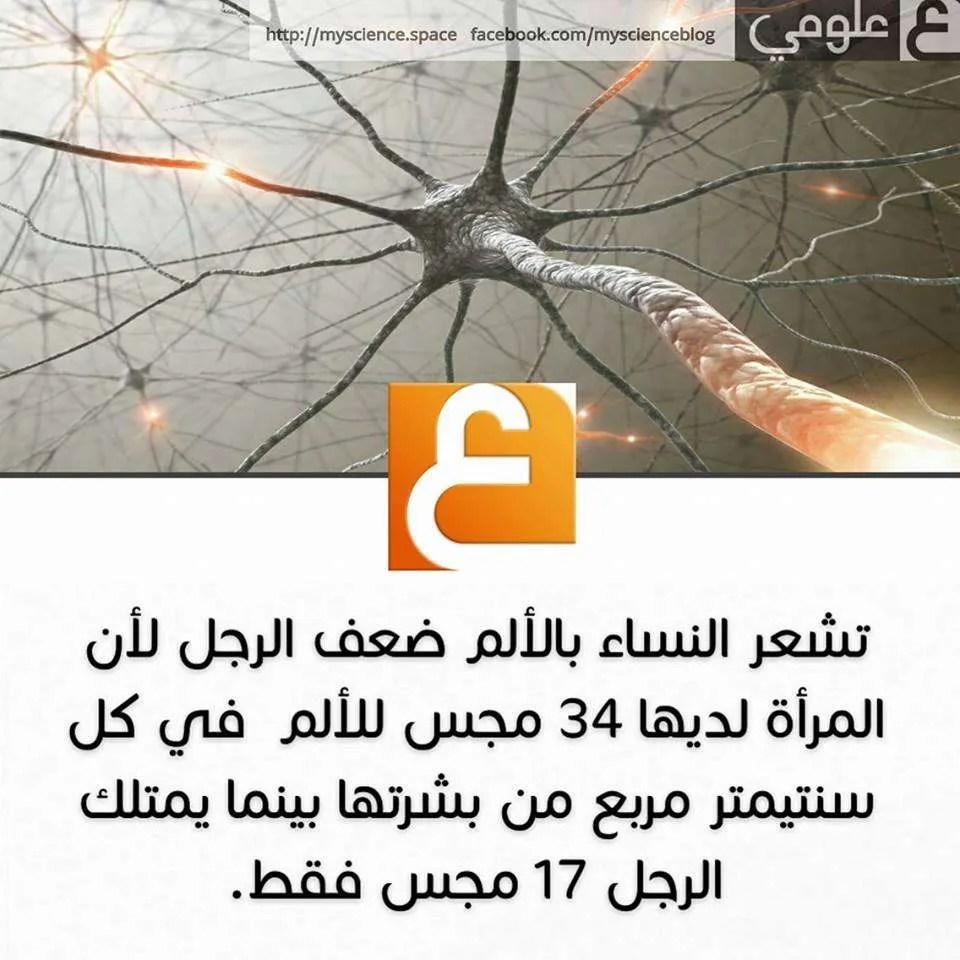 13457619_824118854388796_829350227_n