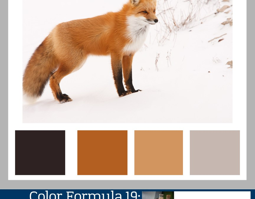 Color Formula 19: The Fox in Winter