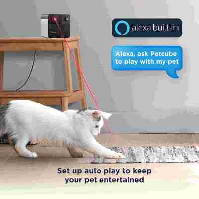 Petcube Play with Bites 2 Pet Cameras