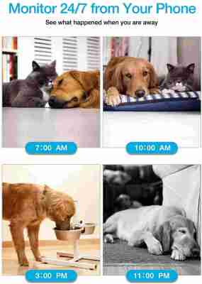WiFi Pet Camera IMILLET Dog Camera