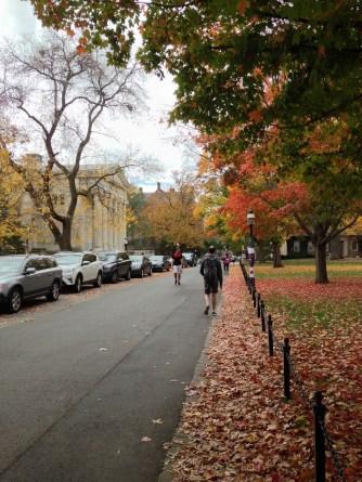 Near Whig Hall