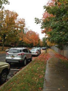 Even the trees were in on the competition with their crimson and orange leaves