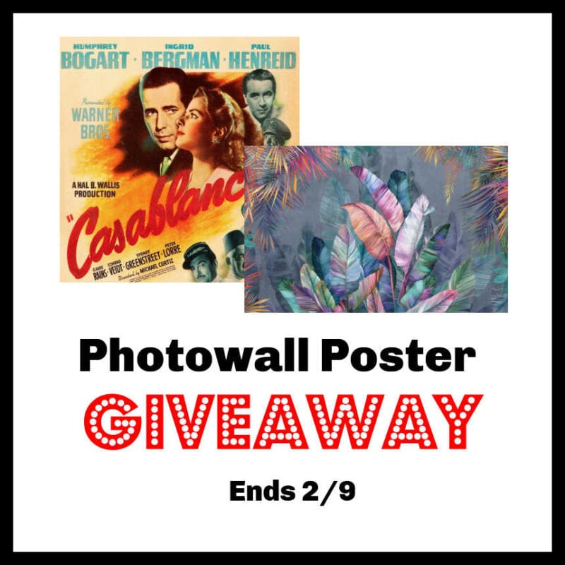 Photowall Poster Giveaway ~ Ends 2/9 @las930 #MySillyLittleGang
