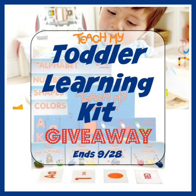 Toddler Learning Kit Giveaway ~ Ends 9/28 #MySillyLittleGang