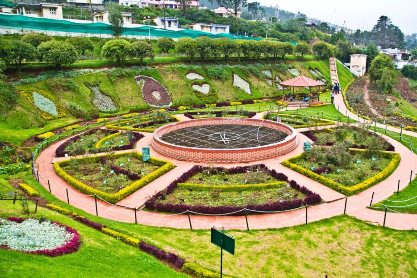 Landsacpe of Rose garden Ooty