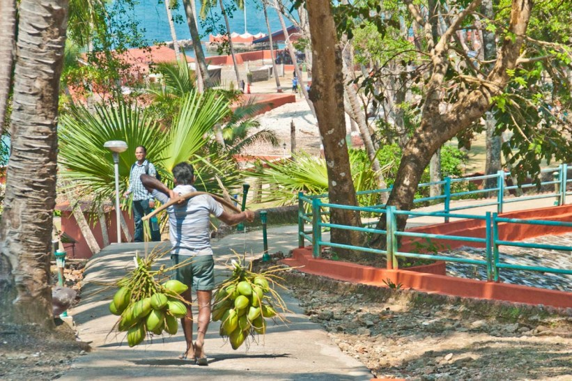 Coconut seller in Ross Island