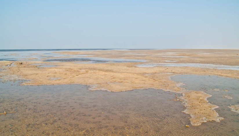 Water in White Rann but no Flamingos