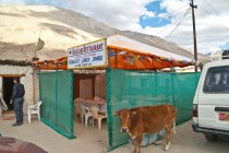 drive from leh to pangong lake8