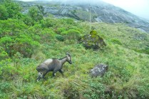 munnar places to visit