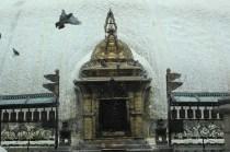 Swambhu