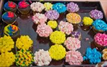 Palate fest cupcakes