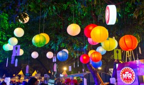 Palate fest lights