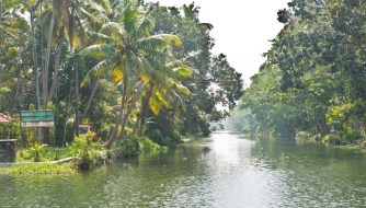 Canals in Kerala Backwaters