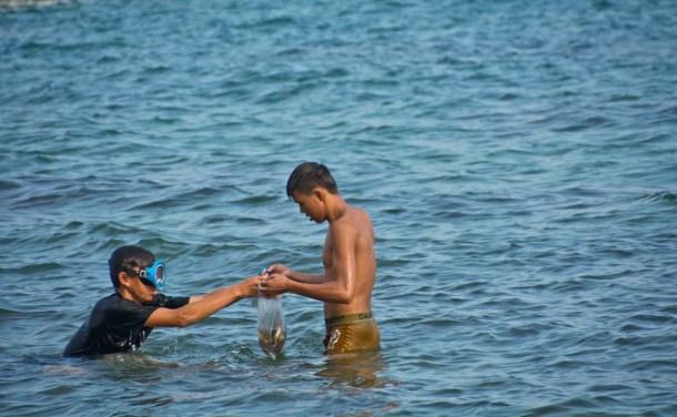 Crab collecting at Serendipity beach Cambodia
