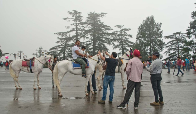 Horse ride at Mall road shimla