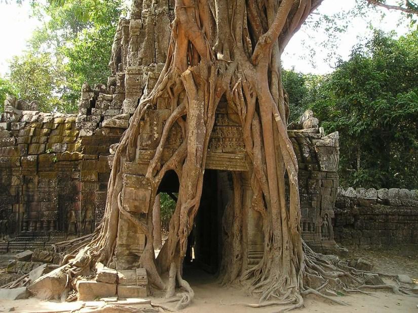 Ta Som Temple, Siem Reap