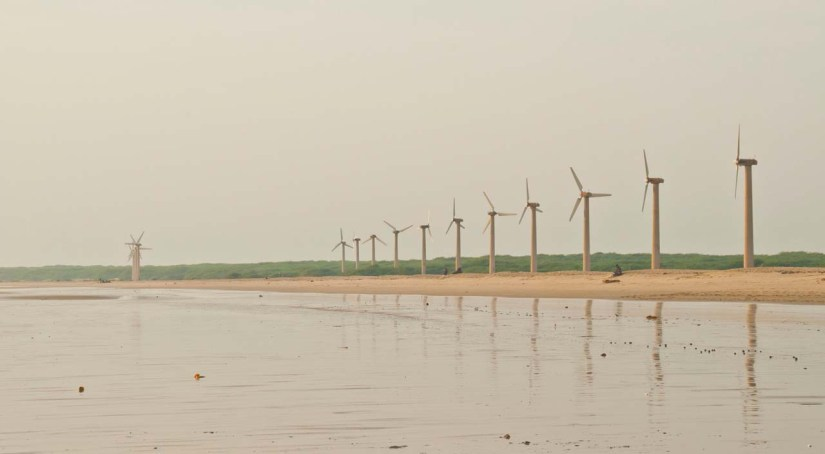 Windmills at Mandvi Beach