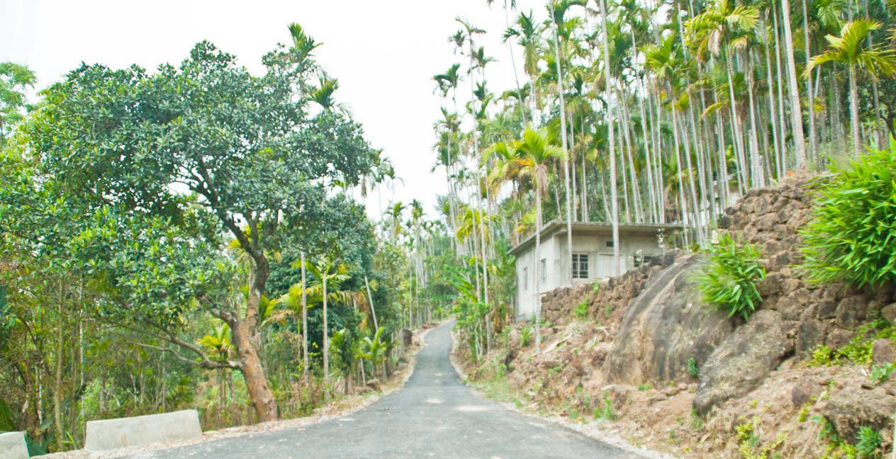 Cherrapunji sightseeing trip from Shillong