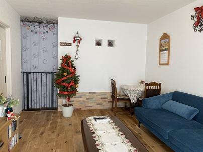 Christmas tree at Sofia  Sofiaのツリーもクリスマスバージョンに衣替えしました♪