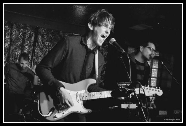 Indie-Pop at its best: Meet the Turvy Organ