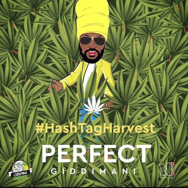 Smart Cops know I'm a stoner for life by Perfect Giddimani