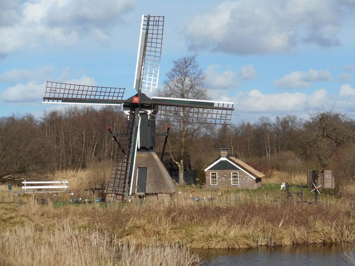 Windmills at the Weerribben