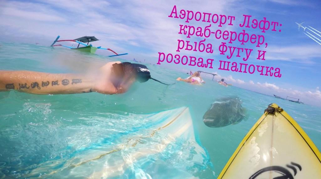 Серфинг на Бали: аэропорт лэфт, краб — серфер, рыба Фугу и розовая шапочка.