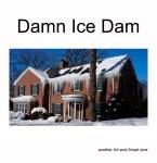 Microsoft Word - Damn Ice Dam zine