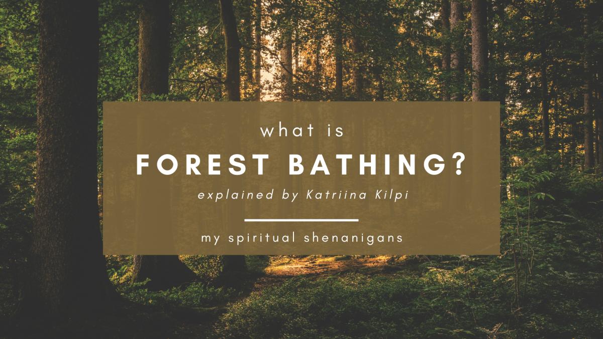 Shinrin Yoku: Forest Bathing Explained By Katriina Kilpi