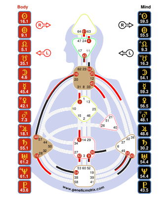 human design chart, projector example, bodygraph, human design archetype