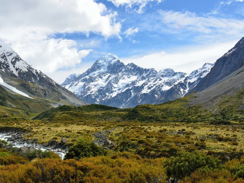 Guide to New Zealand – England Cricket Tour (2019)